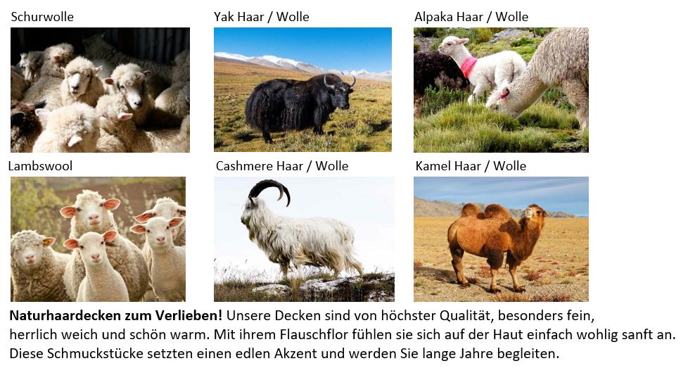 Startbild-Naturhaardecken-Alpaka-ShopesMeZTMCIBQnQ